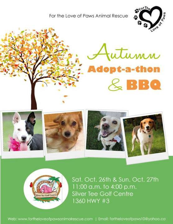 For the Love of Paws Autumn Adopt-a-thon at Silver Tee Golf Centre