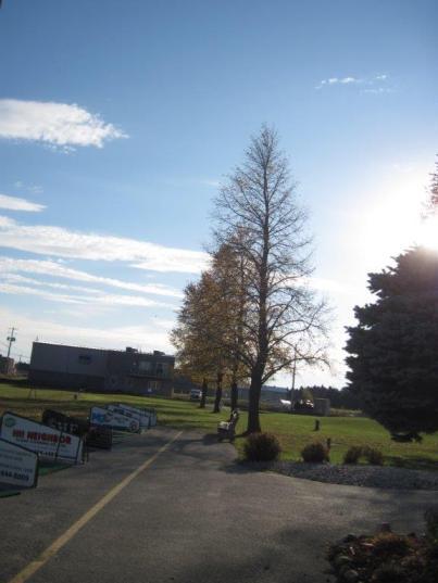 Silver Tee Fall Golf Essex Windsor Ontario