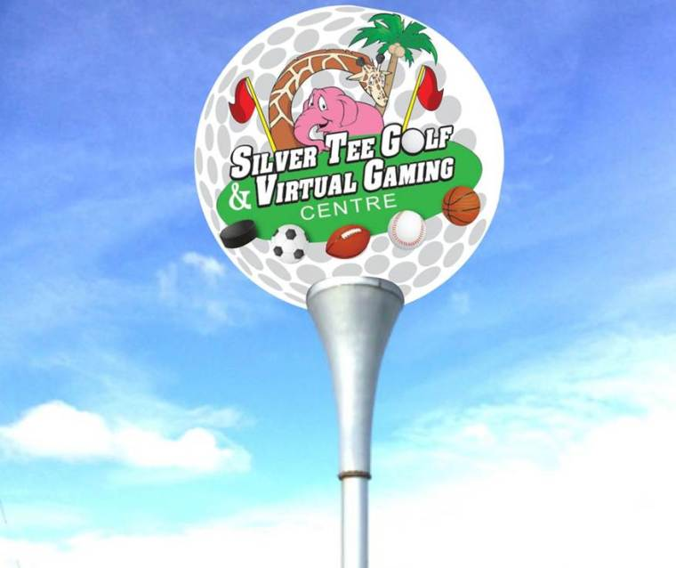 Silver Tee Virtual Gaming Centre Lighted Golf Ball