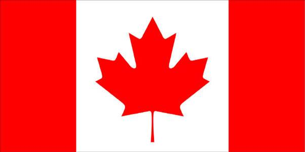 Fun things to do in Windsor Essex Canada Day