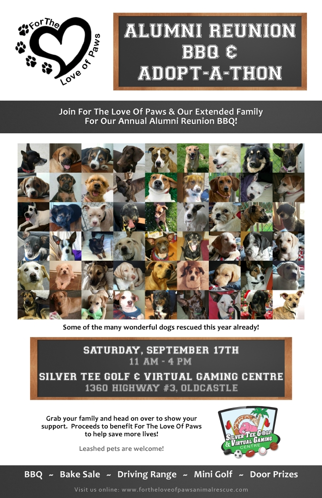 Charity Fundraiser for pets