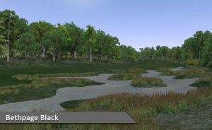 Play Bethpage Black at Silver Tee Windsor