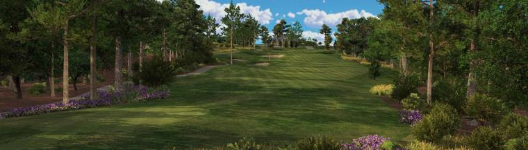 Online Virtual Golf Tournaments WIndsor Essex SIlver Tee
